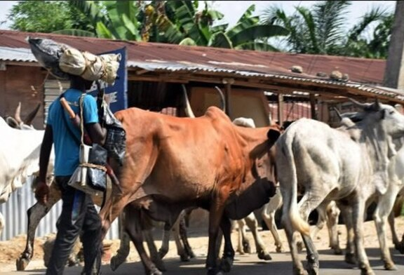 KILLINGS: 'Herdsmen' invade Catholic seminary, shoot priest