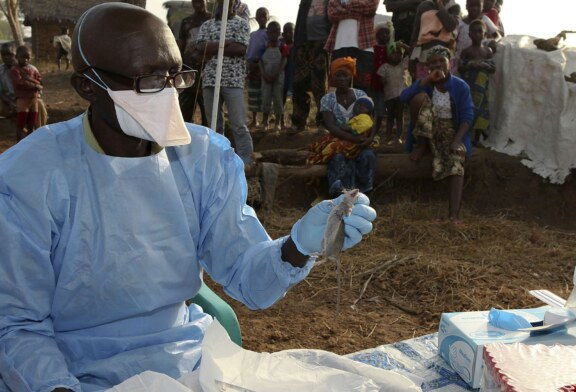 Nigeria's Lassa fever cases decline to lowest level in four months – NCDC