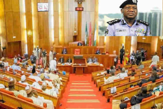 Why I ignored Senate invitation – IGP Idris