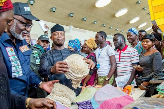 We'll continue to arrest, prosecute looters despite no conviction – Osinbajo