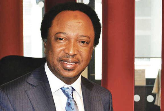 BREAKING: Shehu Sani Resigns From APC