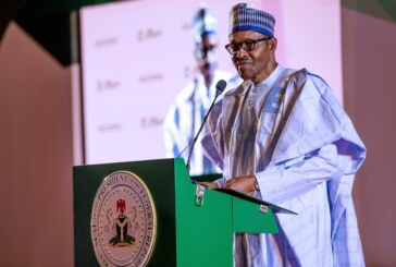 Africans Will Enter Nigeria Without Visa In 2020 – Official