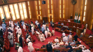 JUST IN: Senate Approves HND As Minimum Qualification For President, Govs