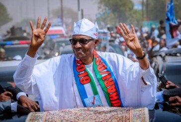 Katsina Indigenes Kill Cows, Share Free Food To Celebrate President Buhari's Victory