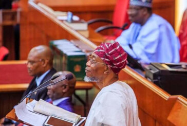 JUST IN: Senate Summons Aregbesola Over Visa On Arrival Policy