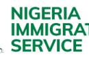 Nigeria Immigration Releases Visa-On-Arrival Application Details