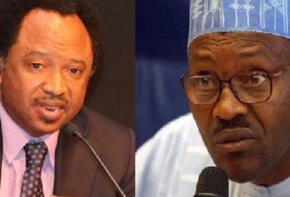 Budget Padding Allegation: Senator Shehu Sani raises posers for Buhari